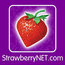 strawberrynet outlet maquillaje primeras marcas
