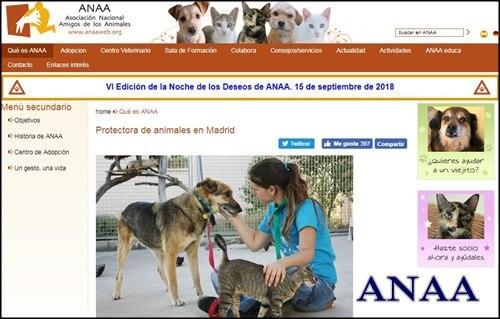 La mejor pagina para adoptar perros anaa