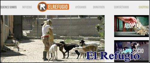 Centro de adopcion de perros