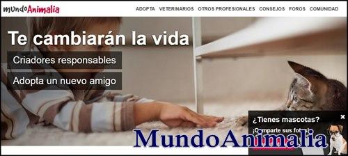 mundoanimalia para adopciones caninas