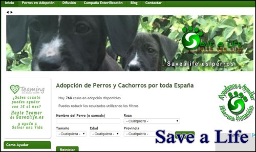 salva una vida de una mascota